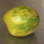 Green Zebra tomato from 2014 harvest