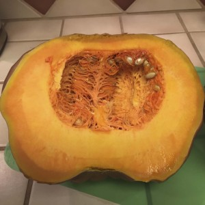 Partially cooked squash