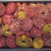 Roasting tomatoes