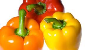 bell pepper5