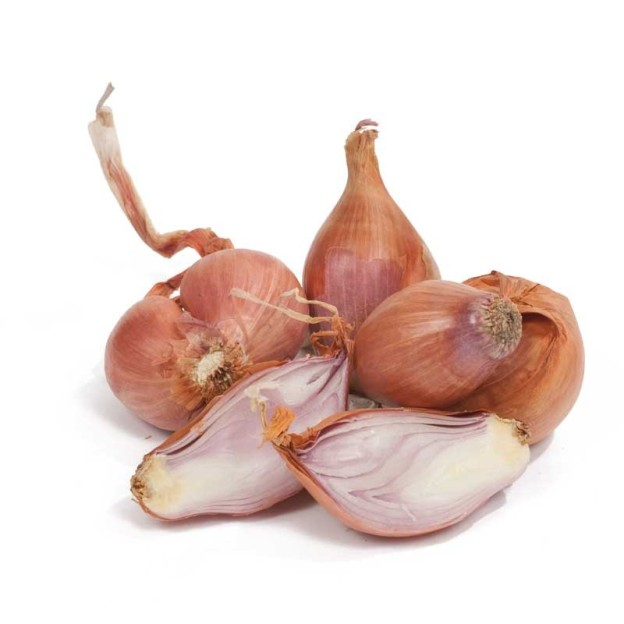 French Red Shallot seed stock from Peaceful Valley Farm
